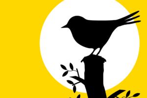 """Avfall i nytt fokus: Sista chansen för """"early birds"""""""