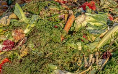 Matnyttigt med lean inom återvinning?