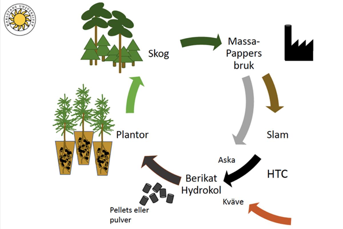 Grafik Biokolprojekt